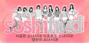 SNSD Concert Banner by soshified