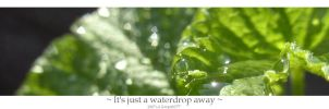 It's just a waterdrop away by Gwynth777
