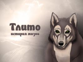 Unfinished wolf by Vadich