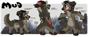 Mud Reference Sheet by Haaaze