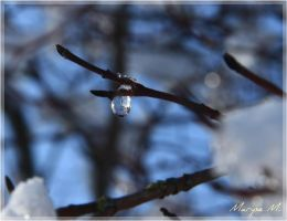 Droplet by oxalysa
