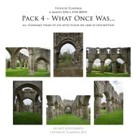 Pack 4 What Once Was by Elandria