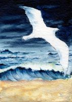 SOLD - Jonathan Livingston Seagull by theperian