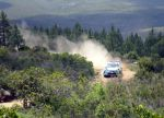 Galli - WRC Sardinia by ShinjiRHCP