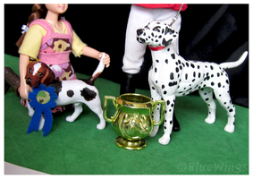 Winners of the 2012 Dog Show by BlueWingsWolf