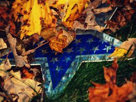 Election in the Fall by amyreneejohanson