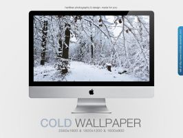 Cold Wallpaper by MrFolder