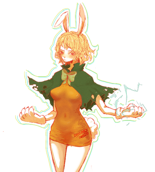 One piece Carrot by Dakumes