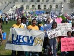 U.F.C.W. for immigration reform by Flaherty56