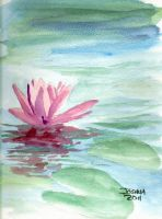 Water Lily by Tater-Vader