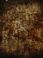 Dried Blood Grunge by simfonic