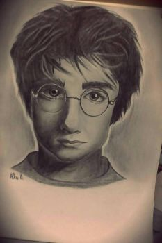 Harry Potter :) by AlbuAlin
