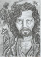 Sirius black by Ruth-Tay