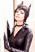 I am Catwoman. Hear me roar. by PuppetsFall