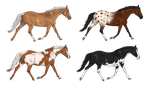 Horse designs - all 200 points by AliceYung