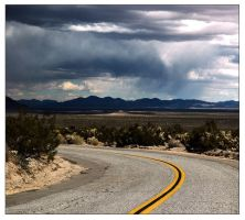 Joshua Tree - 5009 by utoks