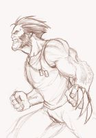 Wolverine Sketch by ZacBrito