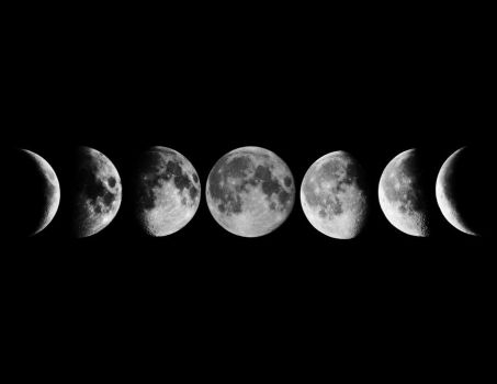 Phases of the moon by twombold