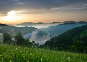 Morning mist by lica20