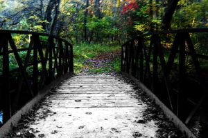 Bridge of Time by nelsonpray