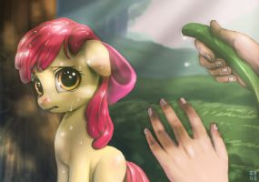 How to make Applebloom Cry by mrs1989
