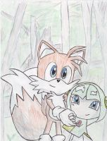 Tails And Cosmo 2 by BabyChrisFox