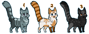 Cheap cat adoptables [1/3 OPEN] by Deeoptables