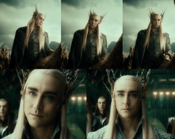 Thranduil stock images by soophieO