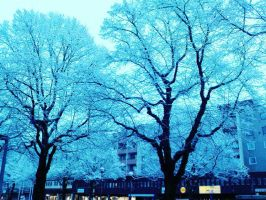 snowie trees by yaoitime