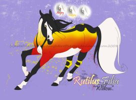 Rutilus Filia by daughterofthestars