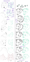 Wolf Head - Research And Practice Sheet by Minks-Art