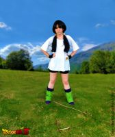 Cosplay Videl by Bella-Colombo