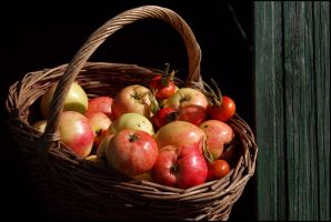 Apples... by Nickdan
