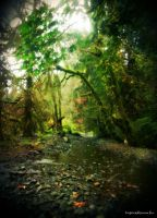 My Enchanted... by ThisW0rldIsMad