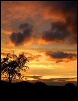 Sunset III by Punkybrewster80