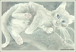 Cosette the Kitty by pixelfish