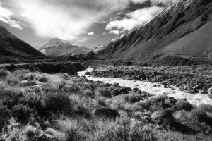In the Hooker Valley by octane2