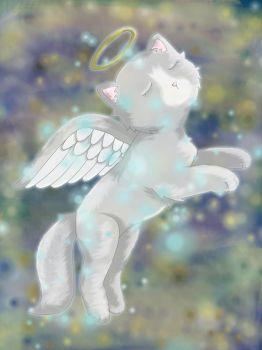 :-Feathertail-Up to StarClan-: by pop2by4