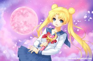Sailor Moon by CID-SEED