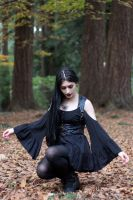 Stock - Gothic \ Fantasy - Forest Black by Mahafsoun