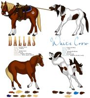 Ref Sheet : Dallas+White Crow by Nylak