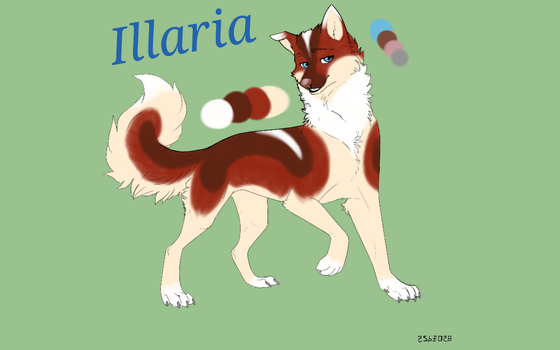 Disclaimer Character Sheet ~ Illaria by Wolviey