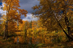 Autumn view... _8_ by my-shots