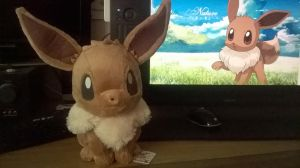 Fluffy EEVEE kawaii