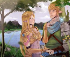 Hyrule Warriors... by firegirl6464