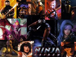 Ninja Gaiden Wallpaper by Image-Ninja