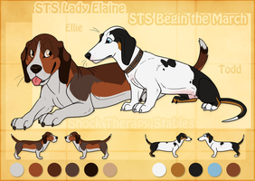 STS Dogs - Ellie and Todd RETIRED by ShockTherapyStables