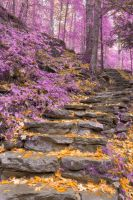 Gold Lavender Staircase by somadjinn