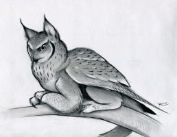 Eagle Owl Griffin by RobtheDoodler