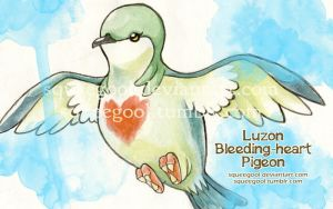 bleeding heart pigeon by squeegool